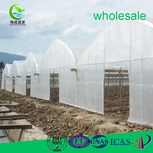 Hot Sale greenhouse steel frame screen green house cooling system