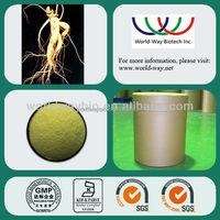 panax ginseng 80% ginsenosides/ ginseng extract weight loss / ginseng extract bulk