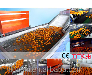 Online cleaning and automatic washing machine for cherry tomato fruit