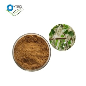 100% Natural Poplar Flower Extract 10:1 powder stevioside stevia extract neotame powder