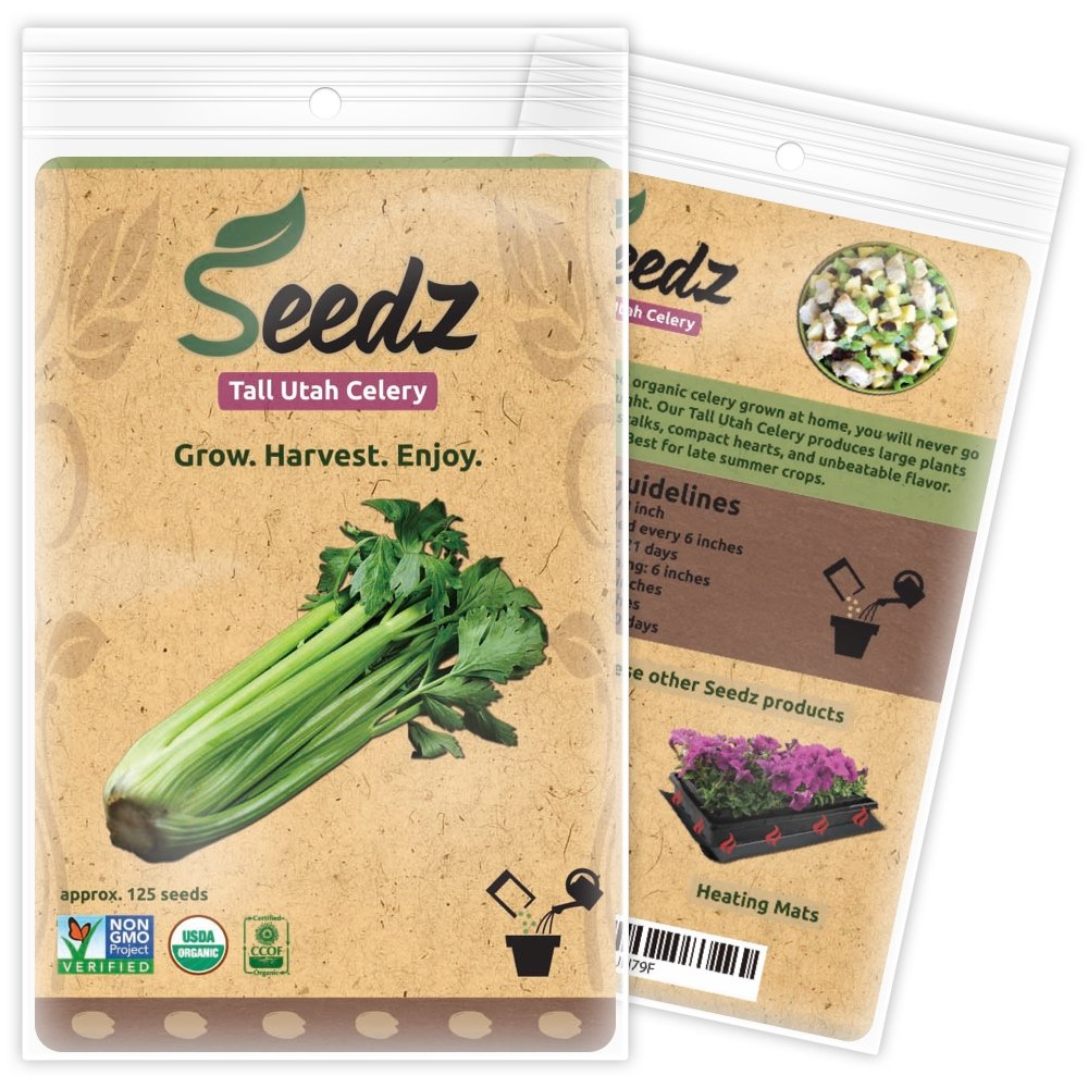 CERTIFIED ORGANIC SEEDS (Appr. 125) - Tall Utah Celery Seed - Celery Seeds, Open Pollinated - Non GMO, Non Hybrid Vegetable Seeds - USA