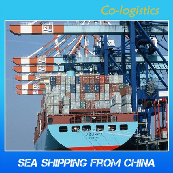 Sea shipping from shenzhen to Saint Etienne--Hester ( skype: colsales20)
