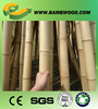 hot item 100% natural Large Dry Raw Moso Bamboo Poles