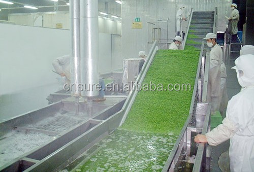 High Efficiency IQF Frozen Vegetable Chili /Spinach/ Cabbage Pre-processing Production Line/Equipment/Blanching Machines