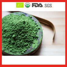 EU Organic New Season Green Tea Powder