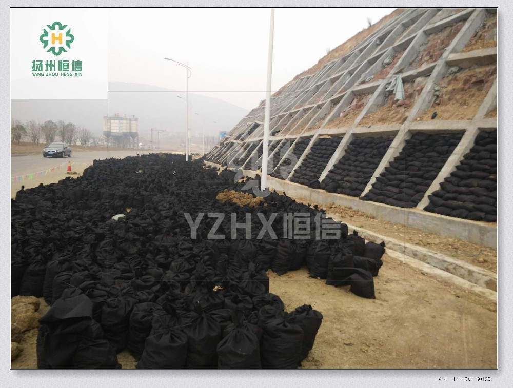 Large Offshore Filled Geotextile Sand Containers for ...