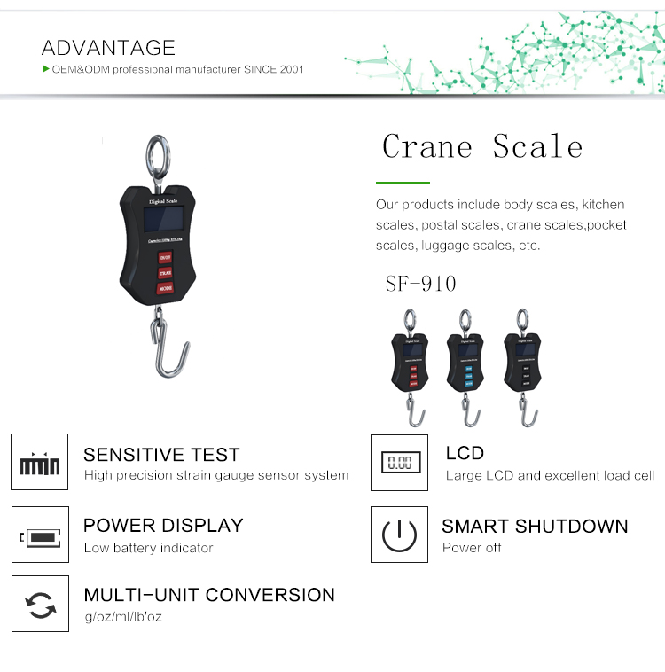 Customized Logo/Package Hanging Scale 50Kg /10g Digital Scale BackLight Fishing Pocket Weight Scale Luggage Scales Kg Lb OZ