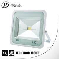 New style remote control outdoor ip65 sliver cob led flood light 50w