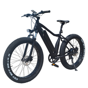 Cheap electric bike bicycle lithium battery ebike for adults