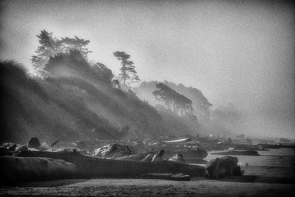 Beach Photography, Fog, Driftwood, Sunrise, Low Tide, Sand, Fine Art Photography, Black and White, Pacific Northwest, Washington Coast, Pacific Coast, Landscape, Zen