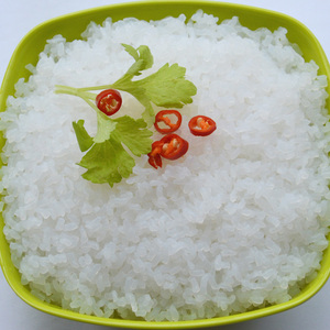 diet food shirataki konjac rice,health food with IFS,BRC,HACCP Certification