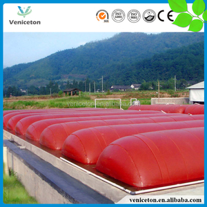 China Veniceton biogas plant function from cow dung for electricity generation