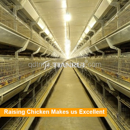 China Chicken Cage Breeding System for Sale