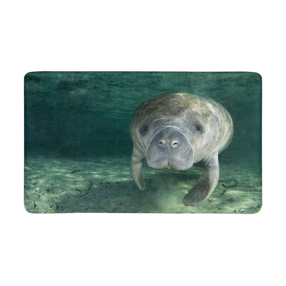 """InterestPrint Funny Cute Manatee Wild Animal Doormat Non-Slip Indoor And Outdoor Door Mat Home Decor, Entrance Rug Floor Mats Rubber Backing, Large 30""""(L) x 18""""(W)"""