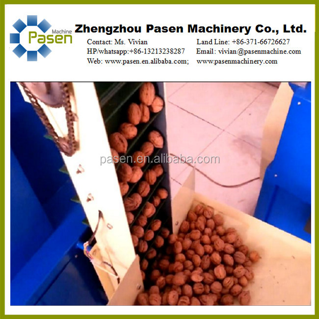 Industrial Walnut Nut Cracker,Walnut Shell Crushing Machine, Walnut Shell Removal Machine