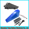 Hot sale 1000W 48V 20AH Electric Bicycle Battery 48V Lithium Battery 48V 20AH E bike battery