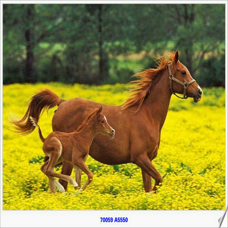 Well known Famous Horse Paintings Wholesale, Horse Painting Suppliers - Alibaba GS76