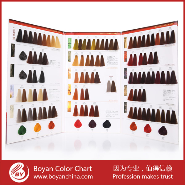 hair colour mixing chart: New fashion hot selling paint colour chart printing hair color