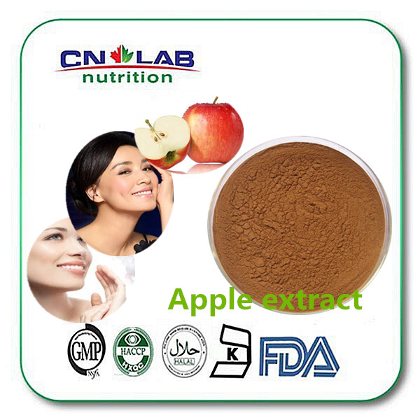 low price supply apple extract weight loss and Apple Cider Vinegar Extract from organic apple