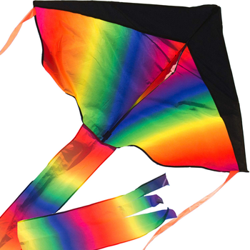 Large Rainbow Delta Kite Easy to Assemble, Launch, Fly - Premium Quality, Great for Beach Use - The Best Kite for Everyone