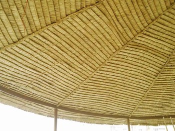 Thatch House Construction In India