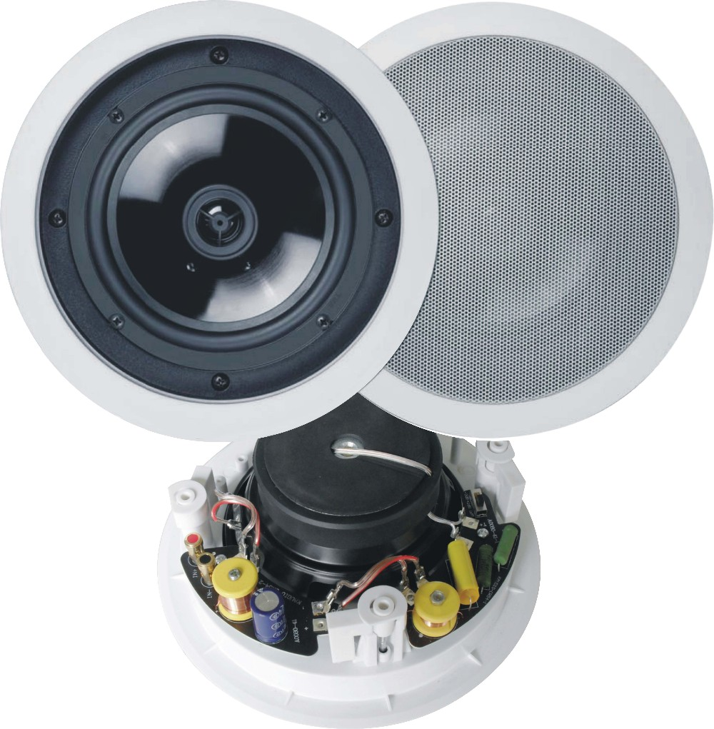 2-way angled frameless ceiling mini speaker