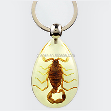 Resin Craft Cheap Resin Cabochon Key Chain Amber Craft Insect Key Chain