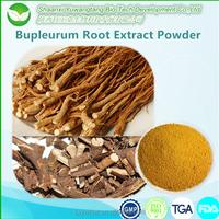 Chinese Herbal Remedies Radix Bupleuri/ Bupleurum Root Extract Powder