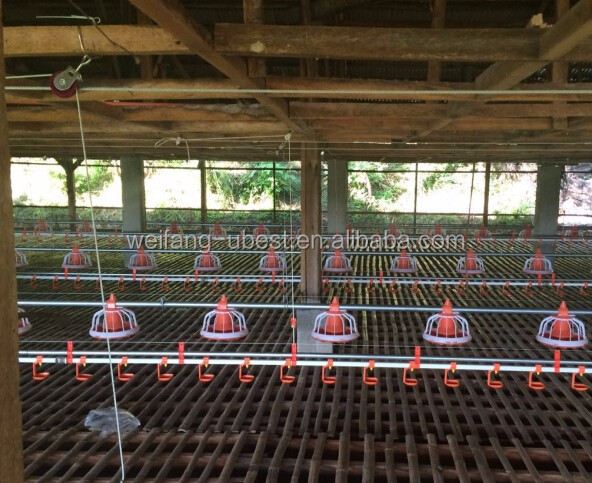 Competitive Price Broiler Poultry Farm Construction Design In ...