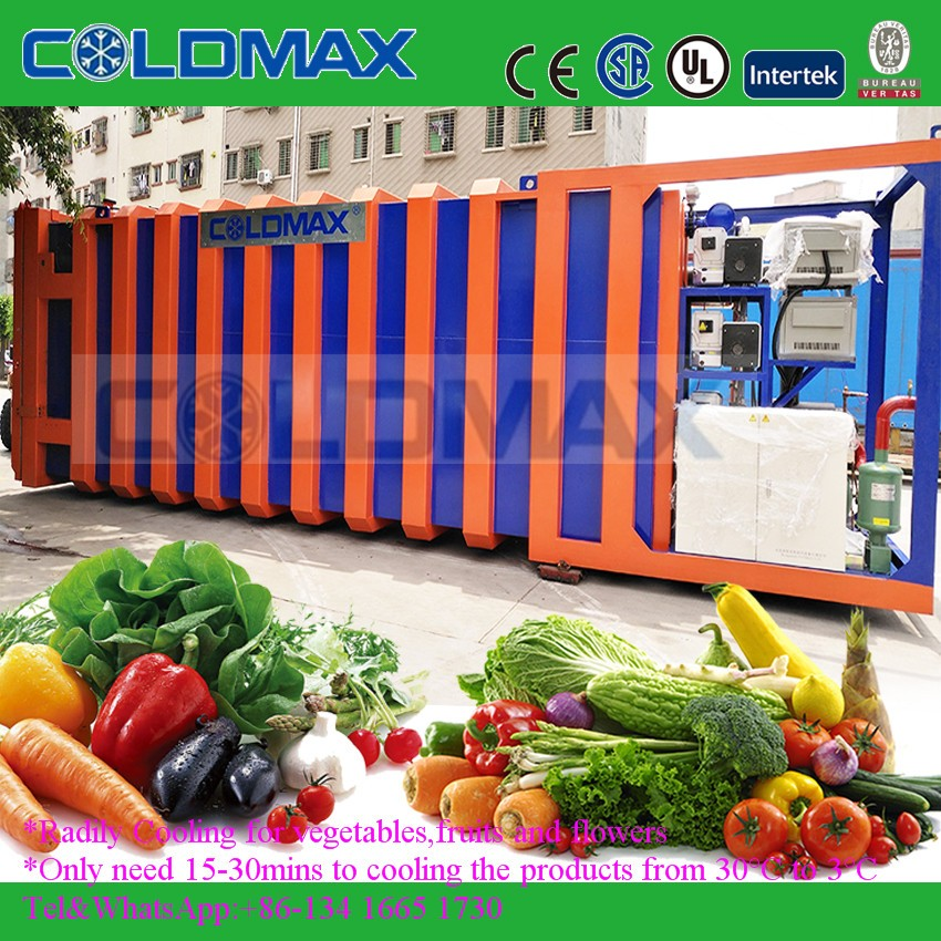 quickest and most cost-efficient vacuum cooler machine for vegetable, fruits, flowers fresh keeping (KMS-1pallet to 24 pallets)
