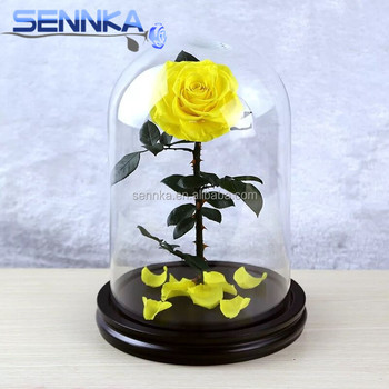 Long Lasting Eternal Preserved Flowers Rose With Long Stem In Glass