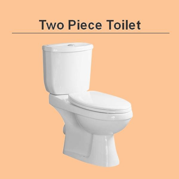 B1110 bathroom siphonic dual flush elongated two piece toiet combo