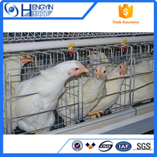 chicken cage/layer cage with auto drinking system on sale