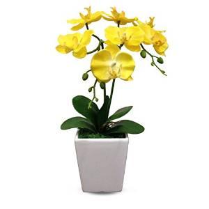 Artificial Silk Flower Decorative Silk Flower Arrangement with Ceramic Vase, Butterfly Orchid (Drunkened Concubine) (yellow)