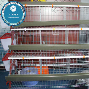 Can feed 48 chickens half side chicken breeding cage with drinking and food system(Guangzhou Factory)