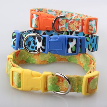 Best Selling Eco-Friendly Wholesale Dog Collar Pet