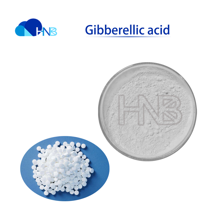 Gibberellic acid sex precocity