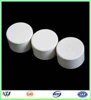 factory sell 3 4 6 8 10 12 24 inch sch40 pvc pipe cap