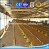 prefabricated steel structure poultry breeder house/pig slaughter house/small poultry house