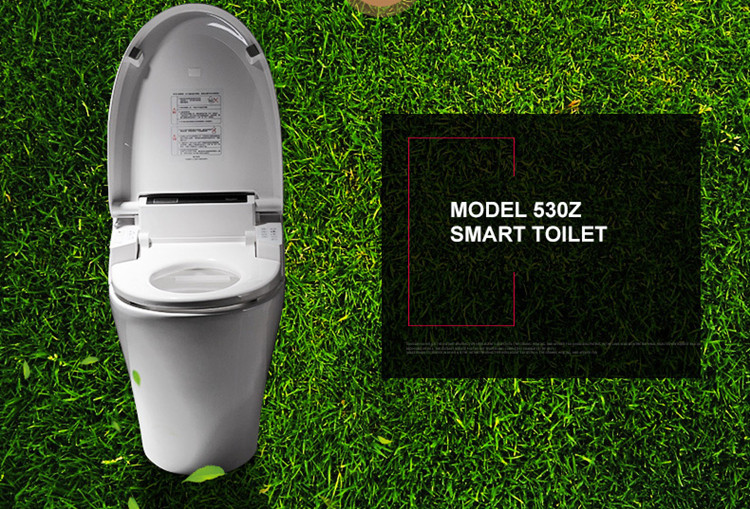 antibacterial dual nozzle smart toilet seat automatic self-clean japanese wc