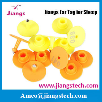 veterinary oem avaliable animal marking ear tags for sheep and goat and livestock