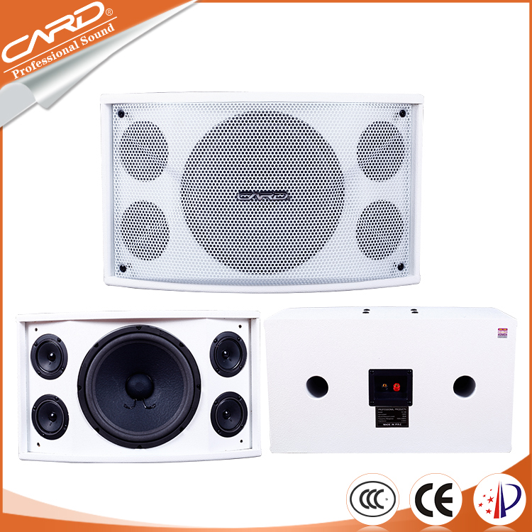 China pro audio good echo speaker ktv system with OEM service