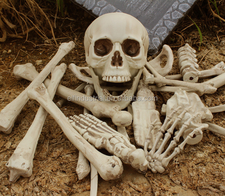Halloween Props Realistic Skull Haunted House Yard Decoration Scary Halloween Skull Pack 27PCS