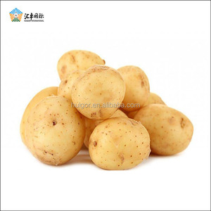 Good quality 50-100gram fresh holland potato in packaging bags