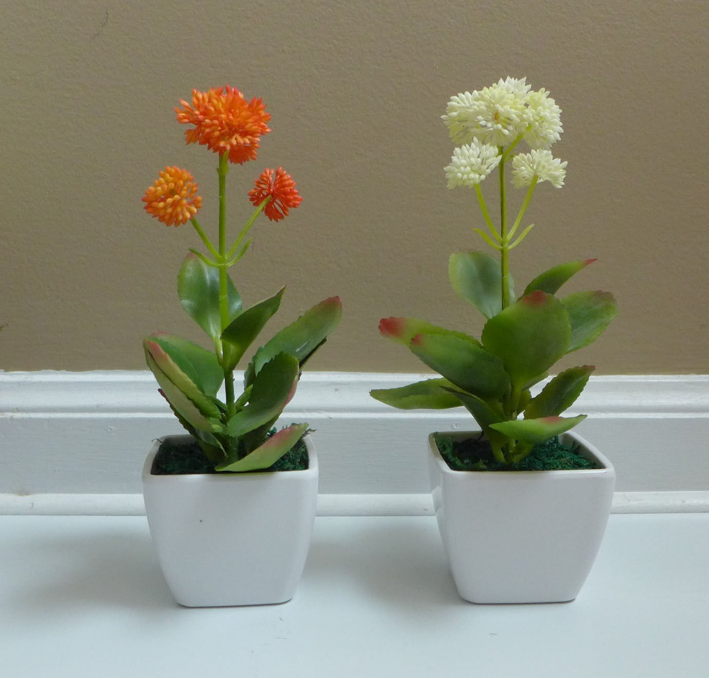 cheap office plants. Small Artificial Desert Flower Succulent Mini Potted Plants Trees \u0026 Shrubs For Decoration Table Office Cheap