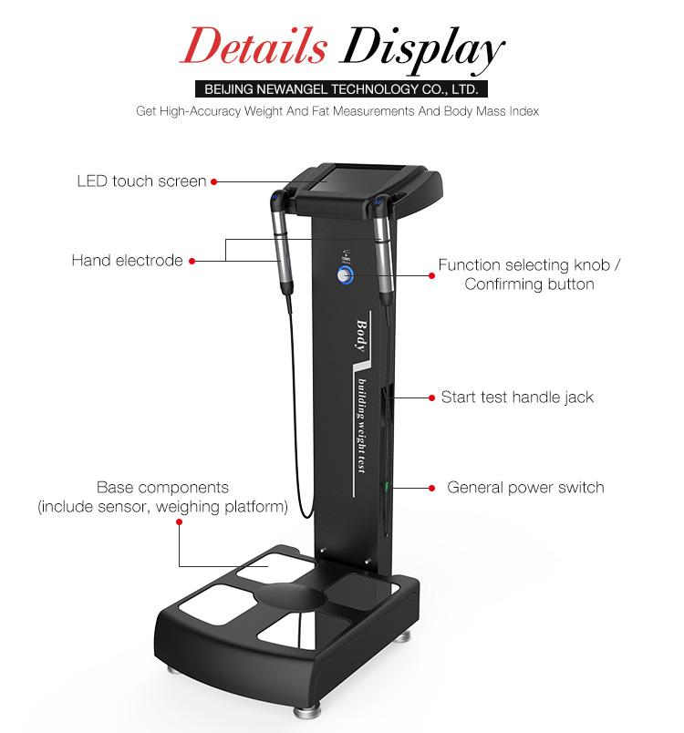 Composizione del corpo umano analyzer Professional body fat analyzer con stampante