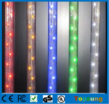 Hot Ing Topsung Led Rope Lights