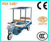 CE Certificate electric solar power tricycle 48V 800W, cheap electric tricycle, hot sale solar power tricycle, AMTHI