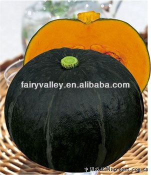 chinese dark green pumpkin seeds vegetable seeds for sale