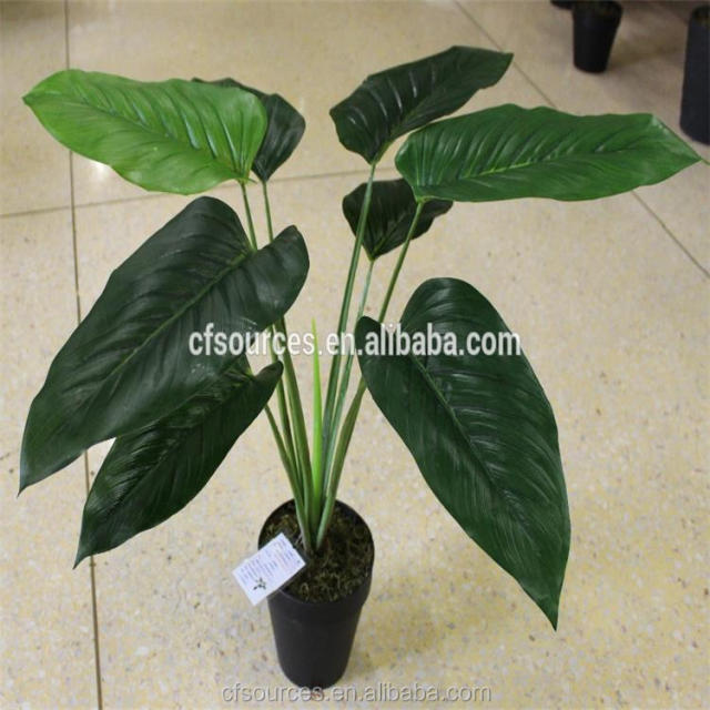 small fake indoor plants-source quality small fake indoor plants